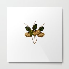 Magical flora #4 Metal Print