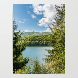 Carpathian Mountains View In Romania, Summer Landscape, Transylvania Mountains, Forests Of Romania Poster