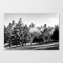 Central Park NYC Canvas Print