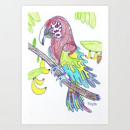 Scarlett Macaw Art Print