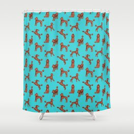 Chocolate Poodles Pattern  (Turquoise Background) Shower Curtain
