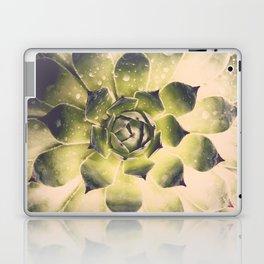 Succulent VI Laptop & iPad Skin