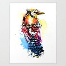 Crazy Jay Art Print