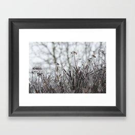 frozen. Framed Art Print