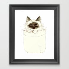 Puss in Pocket (B) Framed Art Print
