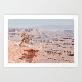 Canyonlands. Art Print