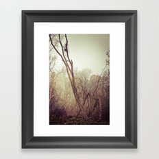 To the woods Framed Art Print