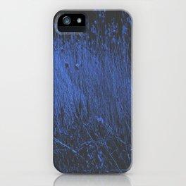 Blue Jay Whey iPhone Case