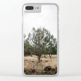 Tree in the Desert near Las Vegas Clear iPhone Case