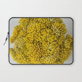 curry flowers II Laptop Sleeve