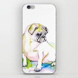 Pug Dreams iPhone Skin