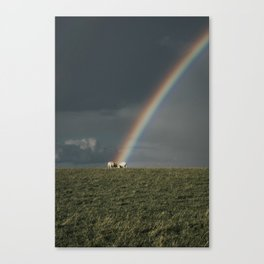 Rainbow II  - Landscape and Nature Photography Canvas Print