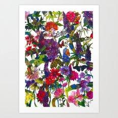 Botanical Butterflies Art Print