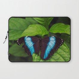 Banded Blue Morpho (𝘔𝘰𝘳𝘱𝘩𝘰 𝘢𝘤𝘩𝘪𝘭𝘭𝘦𝘴) Laptop Sleeve
