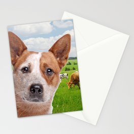 Australian Cattle Dog Red Stationery Cards