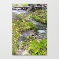 White Water River Canvas Print