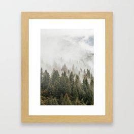 Forest Photography, Nature, Wilderness Framed Art Print