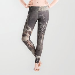 Giraffes // Spotted Long Neck Graceful Creatures in Wildlife Preserve Leggings
