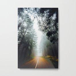 Golden Path (Color) Metal Print