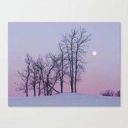 Winter comes to Sandbanks Canvas Print