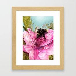 Bee on flower 17 Framed Art Print