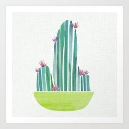 Spring Cactus Flowers Art Print