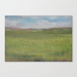 Myakka Prairie Canvas Print