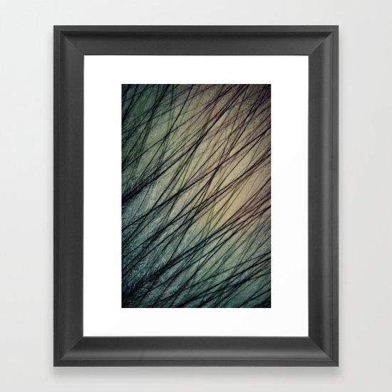 Feathered III Framed Art Print