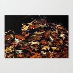 Fall Leaves, 2011 Canvas Print