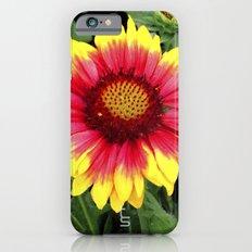 Sunset Blossom Slim Case iPhone 6s