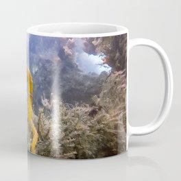 Seahorse Window Coffee Mug