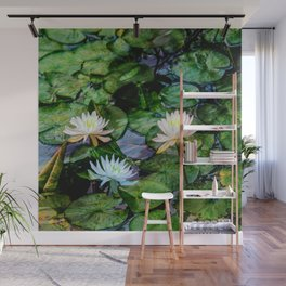 Lilly pond Wall Mural