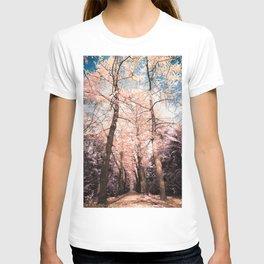 Ginkgo biloba trees T-shirt