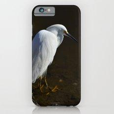Immature Snowy Egret Slim Case iPhone 6s
