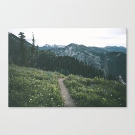 Happy Trails III Canvas Print