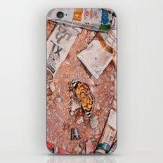 Paints iPhone & iPod Skin