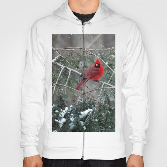 Winter Cardinal Hoody