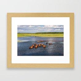 Natural bucolic view in Biebrza wetland Framed Art Print