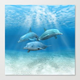 Pod Of Swimming Dolphins Canvas Print