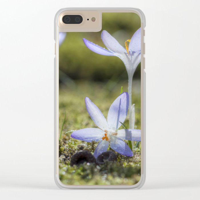 Queen and court- Crocus  Springflowers Clear iPhone Case