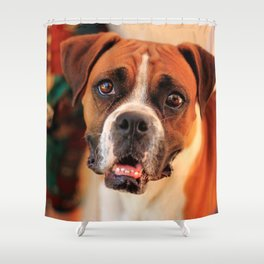 boxer's face weeping of friendly behavior Shower Curtain