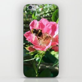 Bee at Giverny iPhone Skin