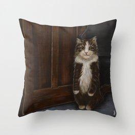 Indoor Cat Throw Pillow