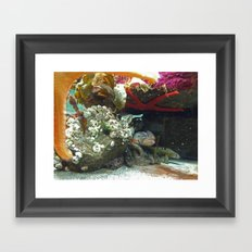 Sea creatures  Framed Art Print