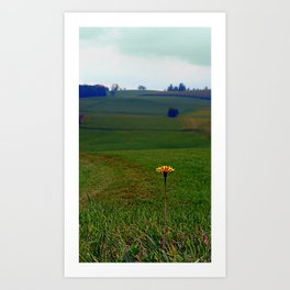 Dandelion with some scenery behind | landscape photography Art Print