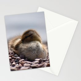 Sleepy Duckling Stationery Cards