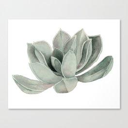 Succulent Plant Watercolor Painting Canvas Print