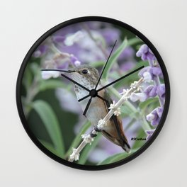 Ms. Hummingbird's Break Time in Mexican Sage Wall Clock