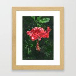 Flamenco by Teresa Thompson Framed Art Print