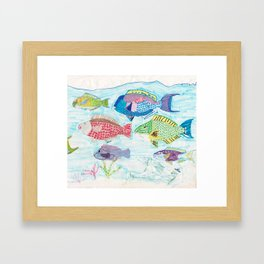 Seychelles Fish 1 Framed Art Print